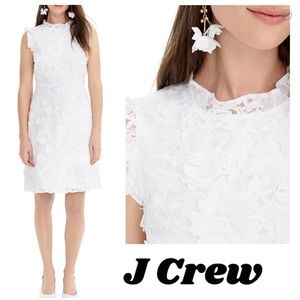 🎁 J Crew A-line dress with lace floral appliqués